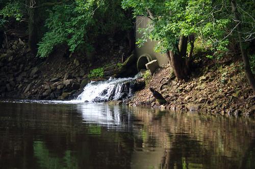 morning summer reflection nature water wisconsin landscape peaceful runningwater mauston lemonweir juneaucounty