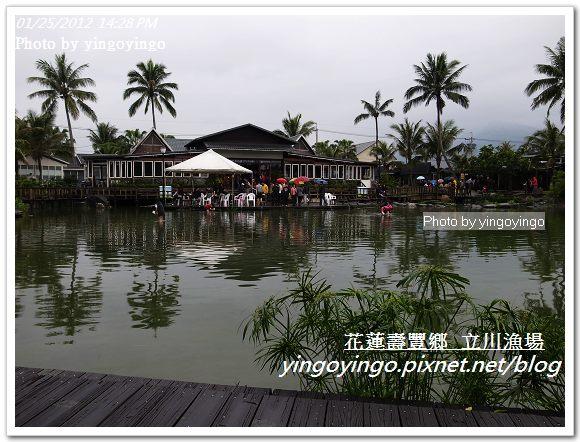 花蓮壽豐_立川漁場20120125_R0050826