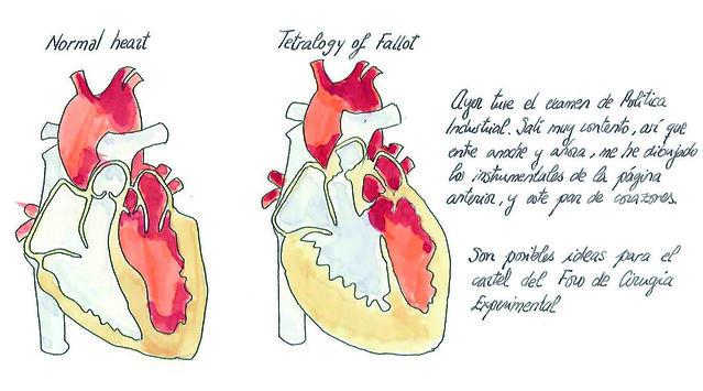 fabadiabadenas_Heart
