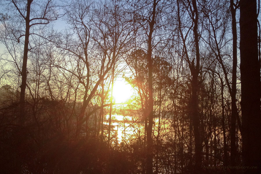 Jan192012LakeSunrise1