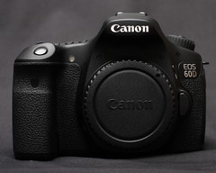 canon eos 60d manual pdf