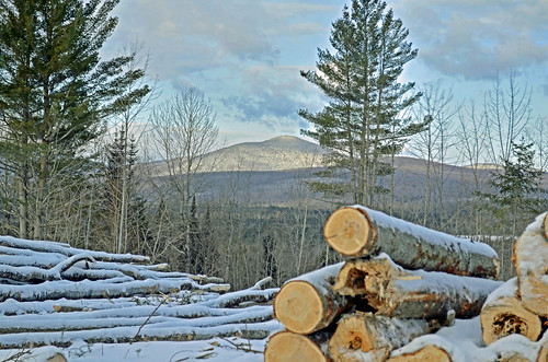 landscape vermont scenery winter logging forestry logs trees snow mountains cut skid nature dblringexcellence northeast kingdom