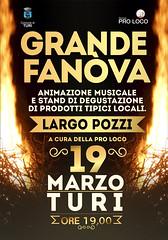 fanove 2014
