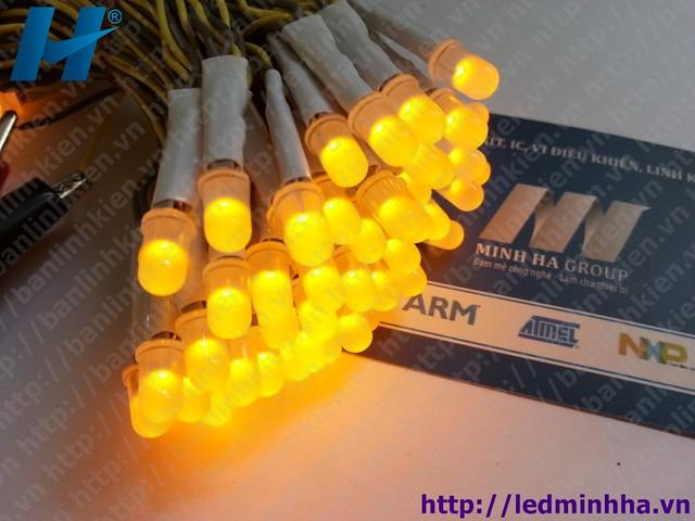 LED Liền Dây Phi 5 Màu Vàng