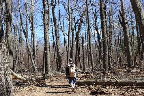 Shenandoah National Park - Whiteoak Canyon Trail - Sagan and Ryan Walk Through Hemlock Graveyard