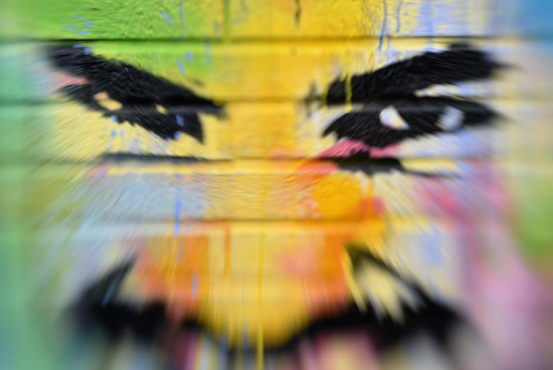 Evry Daily Photo - Street Art Evry - Onemizer - gymnase des Ecrins