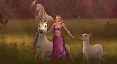526 - Always be a unicorn