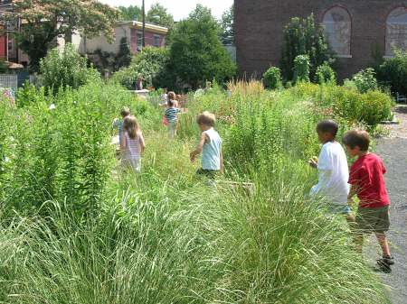 vacant lot in Philadelphia greened by the PA Horticultural Society (by: PA Horticultural Society)