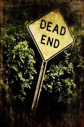 156/365- Dead End by elineart