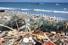 beach, sea, pollution, shore, coast, waste,