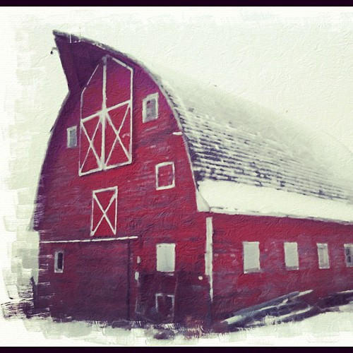 Barn beauty by Kate Daniel