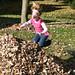 fall_leaves_20111106_21709