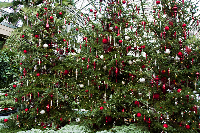 Experience holiday magic at longwood gardens lehigh - Places to eat near longwood gardens ...