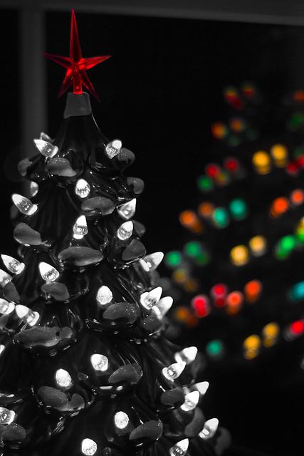 Christmas tree reflection my