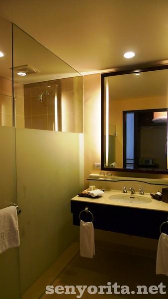 Taal-Vista-HotelDay1-2