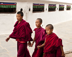 child, people, temple, monk, person,