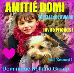 NEW GROUP ; AMITIÉ DOMI - VISIT THE POOL - MERCI !