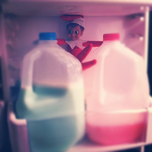 Buddy found our plain white milk to be just a little boring I guess. #elfontheshelf