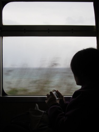 Looking Out of Train Window
