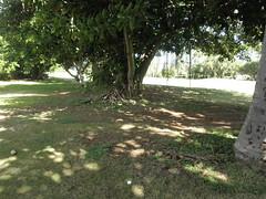 Hawaii Kai Golf Course 163