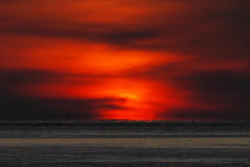 無料写真素材, 自然風景, 朝焼け・夕焼け, 海, 水平線, 風景  日本