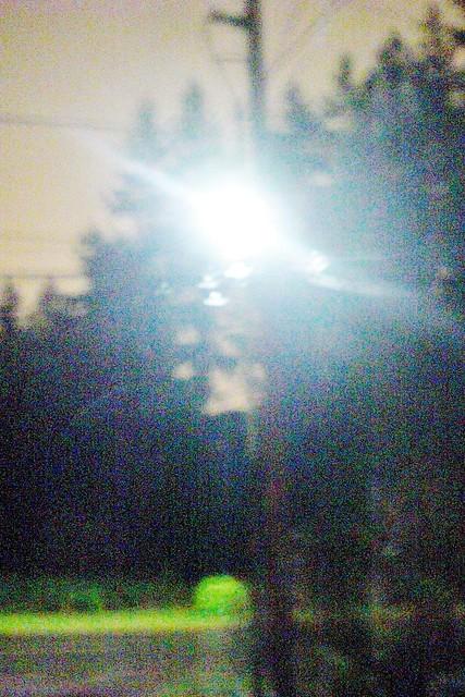 scratchcornlightpost 042