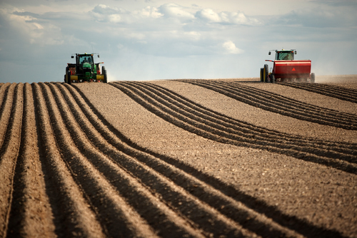 Two tractors plant in field. Research shows that two major farm inputs – land and labor – decreased over time, while output rose. (Photo courtesy of Shutterstock)