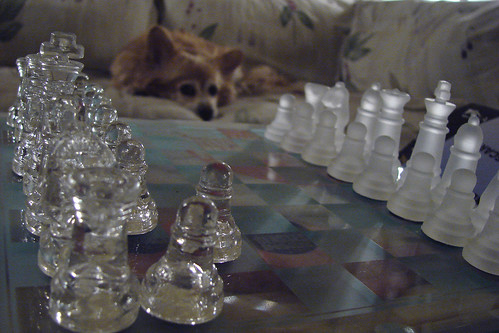 Your Move, Rusty by Jodi K.