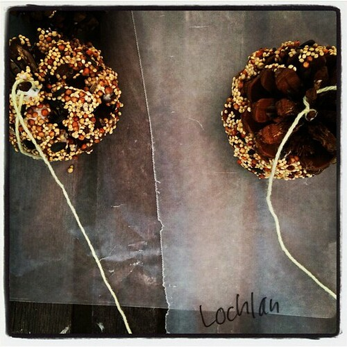 Science For Kids How To Make A Pinecone Bird Feeder Babble Dabble Do
