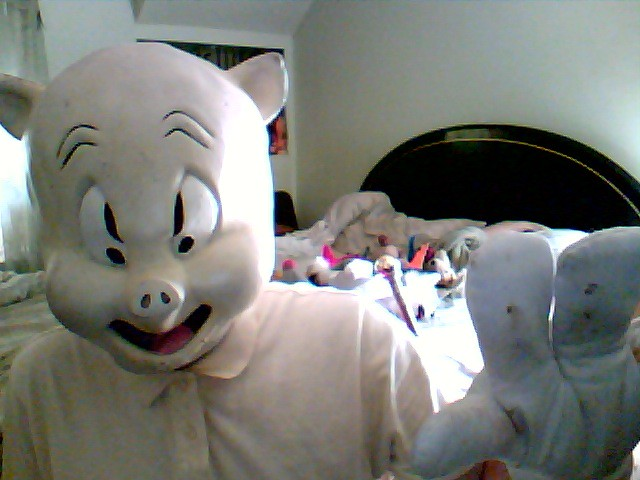 people wearing pig masks a gallery on flickr