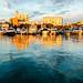 sarasota bayfront bathed in evening sun by laughlinc