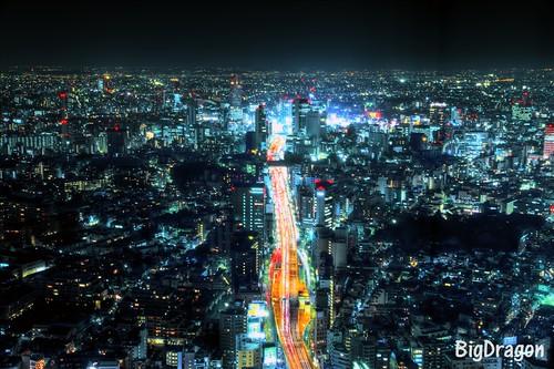 渋谷を望む