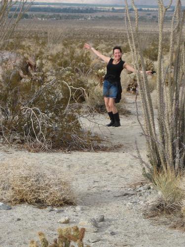 Diva in the Desert