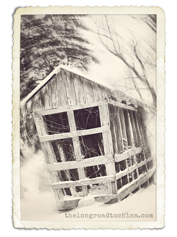 Little Shack Frame 9