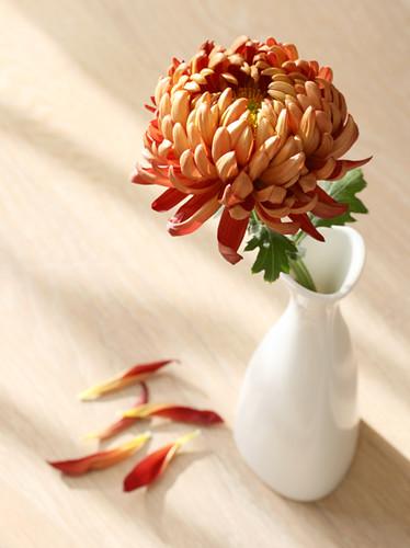 цветочек в вазе1