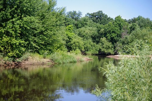 morning trees reflection nature water wisconsin river landscape woods wildlife peaceful mauston lemonweir juneaucounty