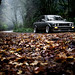 E30 Reedit by patrick.snapp