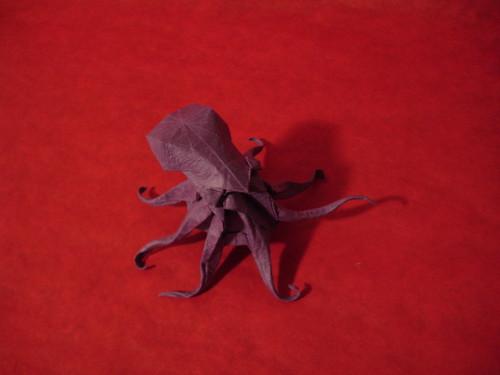 Octopus - Kamiya