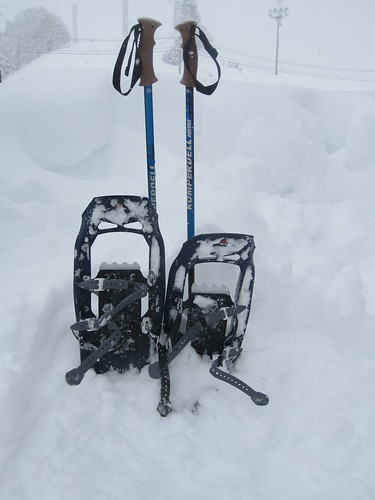 I love my snow shoes!