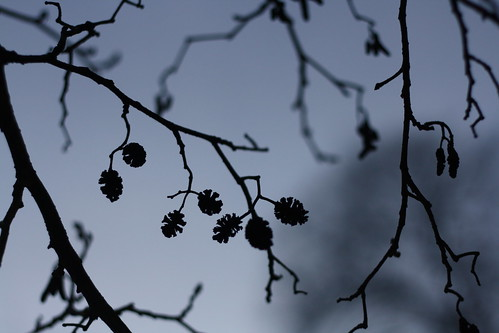 Bild 085