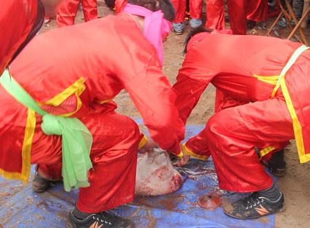 6794338217 3a51e3e05b Lễ hội Chạy lợn ở Hà Nội Nóng bừng 3 phút mổ lợn khao quân