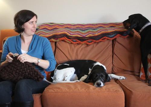 Cara and Pups