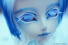 ❅ Prince of Ice ❅ [Eleuthère]