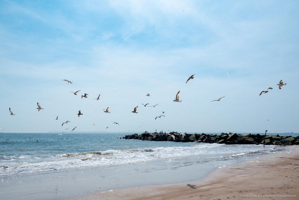 Pacific ocean waterfront in Brooklyn-16.jpg