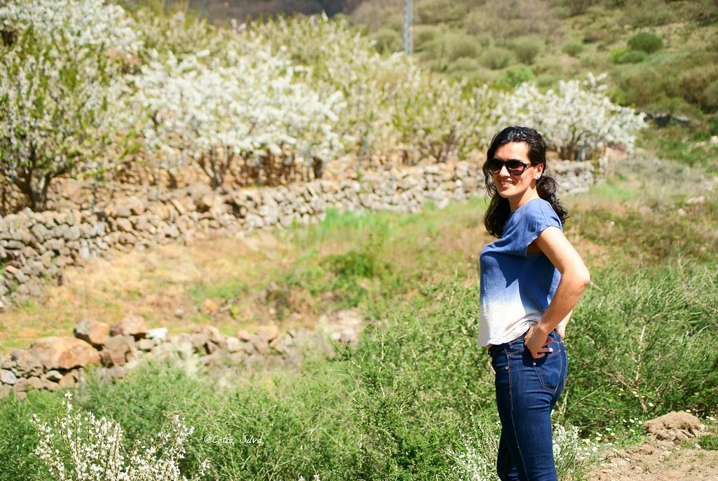 Extremadura-Valle del Jerte-Cerezo en Flor (1)