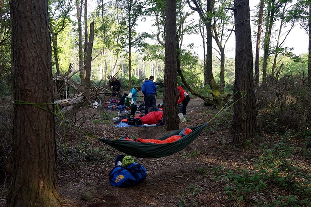 Oxshott Woods Awesome Campout