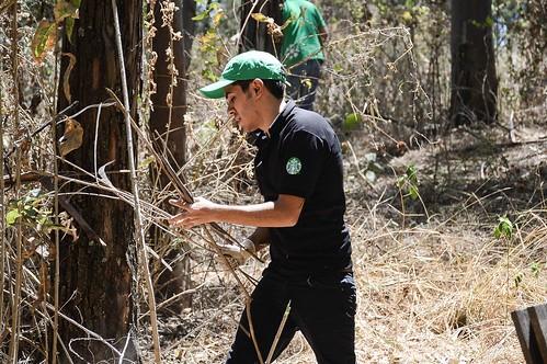 Limpieza de áreas verdes_Mes Mundial de Servicio Comunitario