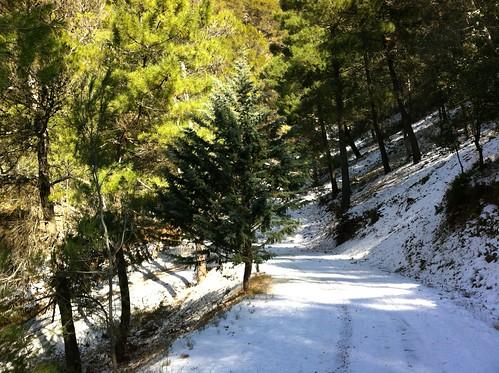 Jabalcuz con nieve
