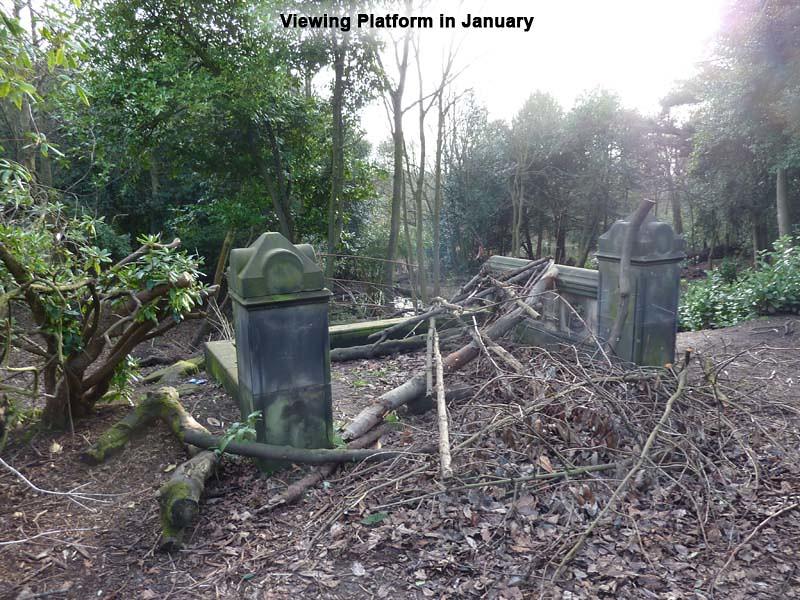 view-platform-january