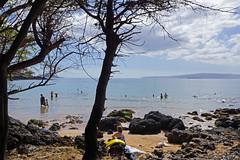 2012-02-10 02-19 Maui, Hawaii 243 Wailea, Ulua Beach